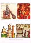 Histoire de la Vigne et du Vin par les Enluminures(16)